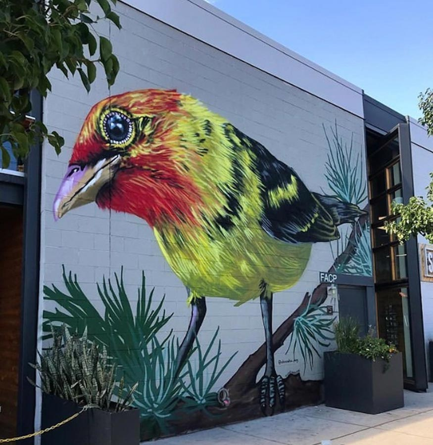 Bird Mural in Denver, CO, by Alexandrea Pangburn. Photo: RiNo Art District